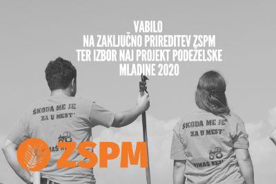 2020_zspm_najProjekt_400pc