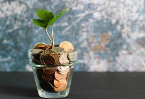 fundraising_plant_coins_unsplash_600px